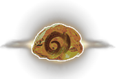 fossilmemory_r